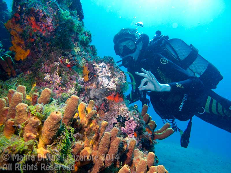 PADI Advanced open water diver in Lanzarote