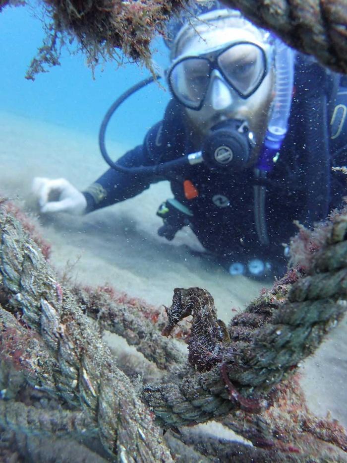 Rune et son premier hippocampe durant le cours PADI scuba Diver à Lanzarote